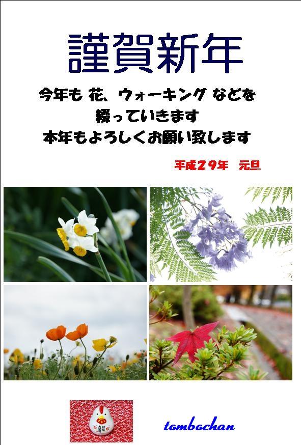 f1_2017ブログ.jpg